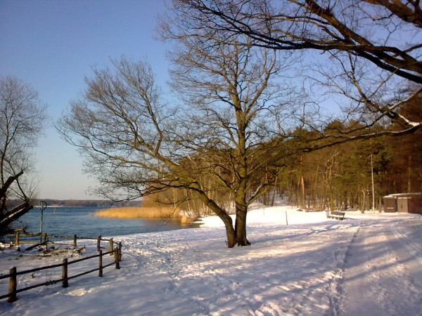 0013_Wannsee-Winter