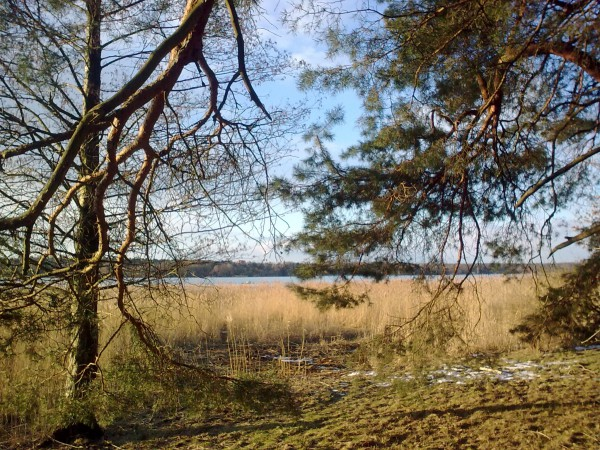 0016_Wannsee-Winter